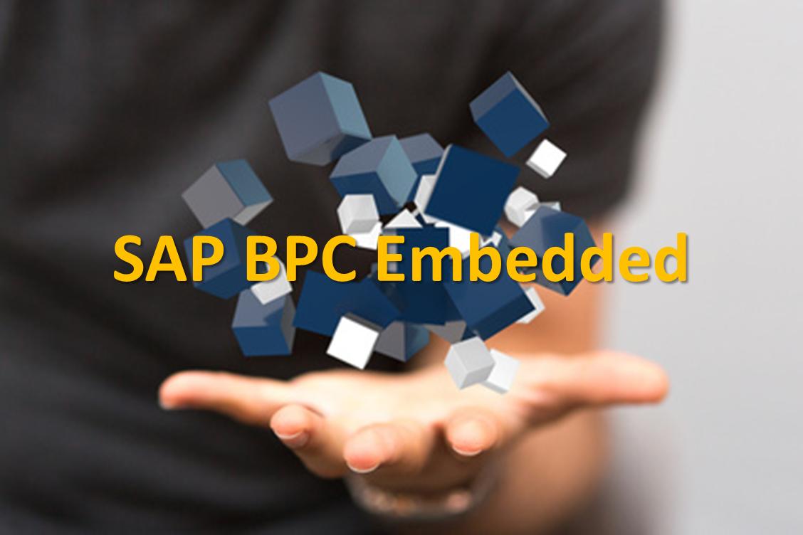 SAP BPC Embedded