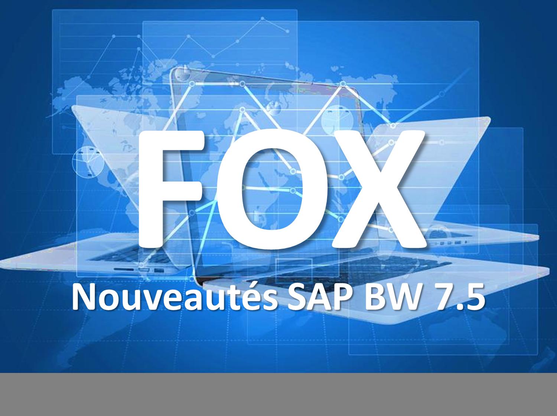Nouveautés SAP BPC Embedded FOX 7.5